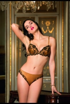 Lise Charmel - Splendeur Soie - Silk Italian Brief
